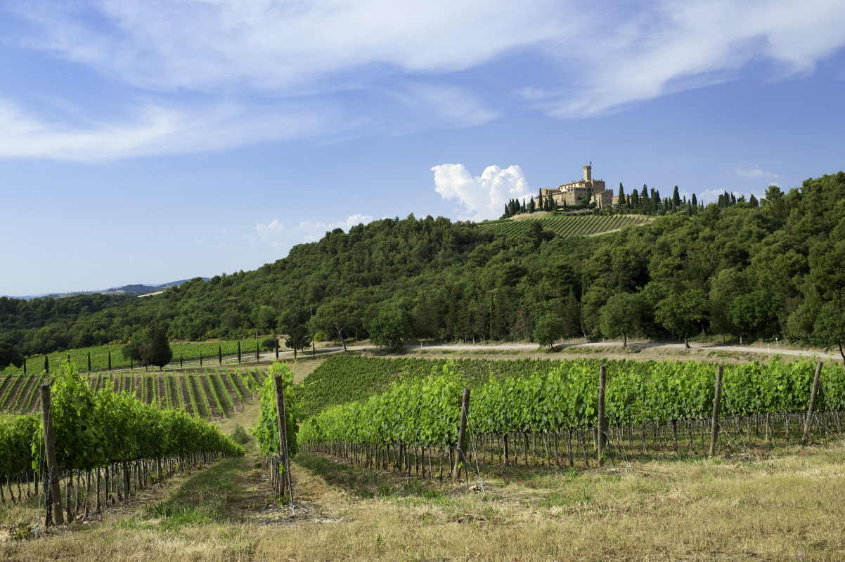 Castello Banfi - Hospitality - Visit our Estate